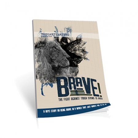 Brave for Boys-500x500